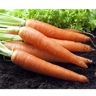 【鮮採家】鮮採紅蘿蔔5台斤1箱(3kg)